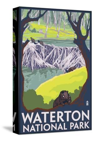 Waterton National Park, Canada - Beaver Family