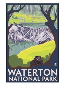 Waterton National Park, Canada - Beaver Family by Lantern Press