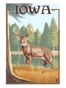 White Tailed Deer - Iowa by Lantern Press