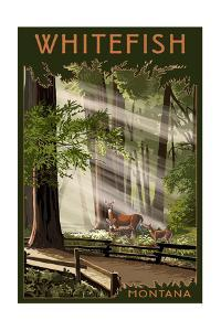 Whitefish, Montana - Deer and Fawns by Lantern Press