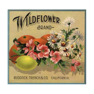 Wildflower Brand - Ruddock, California - Citrus Crate Label by Lantern Press