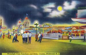 Wildwood-by-the-Sea, New Jersey - Funchase and Roller Coaster in the Moonlight by Lantern Press