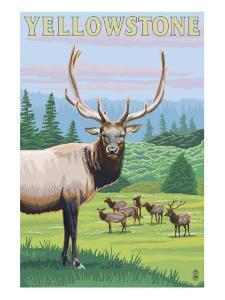 Yellowstone Nat'l Park - Elk Herd by Lantern Press