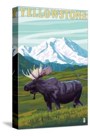 Yellowstone Nat'l Park - Moose & Mountain
