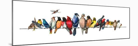 Large Bird Menagerie-Wendy Russell-Mounted Art Print