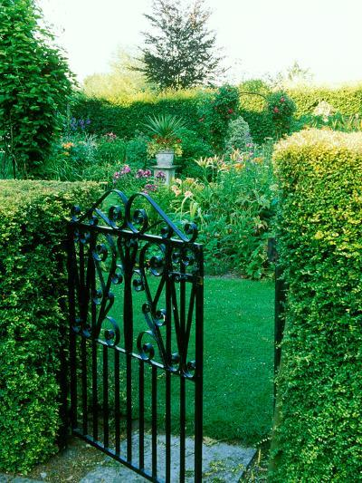 Large Cottage Style Garden, with Colourful Herbaceous Borders-Lynn Keddie-Photographic Print