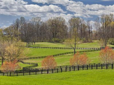 Large Field and Fence Line in Louisville, Kentucky, Usa-Adam Jones-Photographic Print