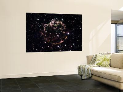 Large Magellanic Cloud--Wall Mural