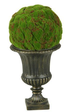 Large Moss Ball in Urn