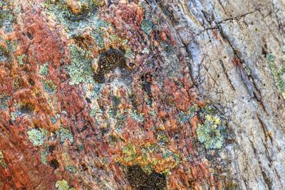 https://imgc.artprintimages.com/img/print/large-naturally-polished-rock-with-lichen-lower-deschutes-river-central-oregon-usa_u-l-q1gbl6t0.jpg?p=0