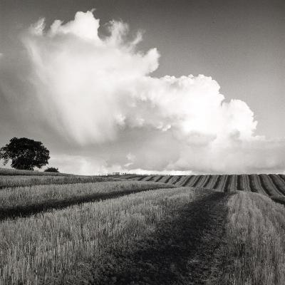 Large White Cloud Near Bilsington, Kent, 1981.-Fay Godwin-Giclee Print
