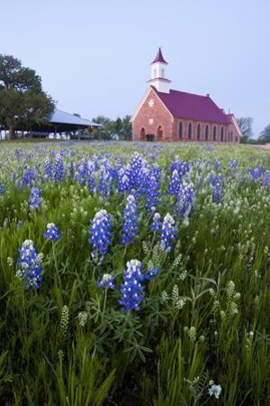 Art Methodist Church and Bluebonnets Near Mason, Texas, USA by Larry Ditto