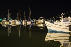 Commercial and Recreational Boats in Fulton Harbor by Larry Ditto