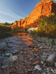 Palo Duro Canyon State Park, Texas, USA by Larry Ditto