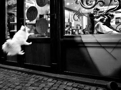 Last Customer-Mirela Momanu-Photographic Print