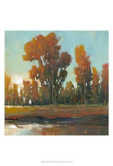 Late Afternoon Fall-Tim O'toole-Art Print