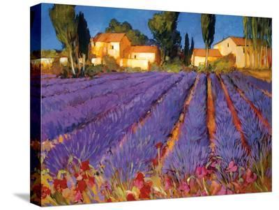 Late Afternoon, Lavender Fields-Philip Craig-Stretched Canvas Print