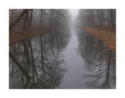 Late Autumn Dawn-Derek Jecxz-Art Print