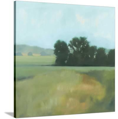 Late Days-Megan Lightell-Stretched Canvas Print