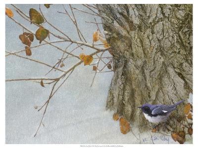 Late Snow Warbler-Chris Vest-Art Print