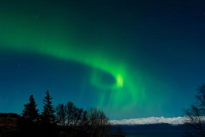 Strong Curled Green Aurora