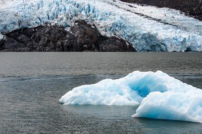 The Ice of Portage Glacier