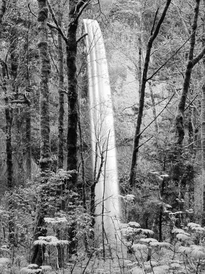 Latourell Falls, Columbia River Gorge National Scenic Area, Oregon, USA-Charles Crust-Photographic Print