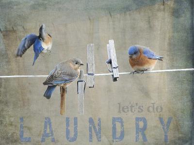 Laundry Day Bluebirds-Jai Johnson-Giclee Print