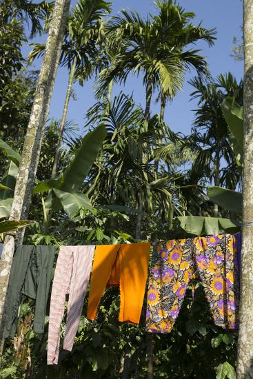 Laundry Dries on a Clothesline Beneath Palm Trees-Kelley Miller-Photographic Print