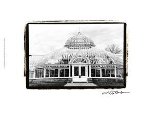 Conservatory III by Laura Denardo