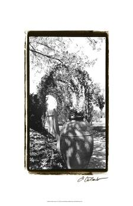 Garden Grace IV by Laura Denardo