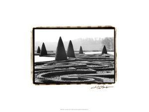 Palace of Versailles Garden I by Laura Denardo