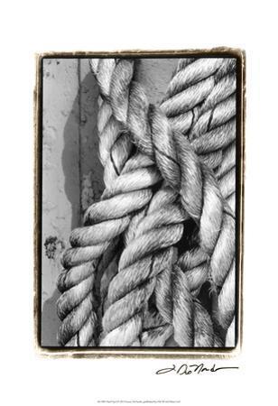 Tied Up I by Laura Denardo