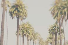 California-Laura Evans-Photographic Print