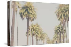 California by Laura Evans