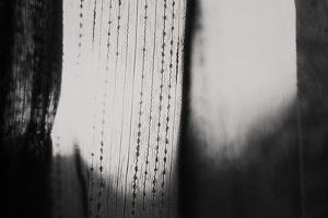 Curtains by Laura Evans