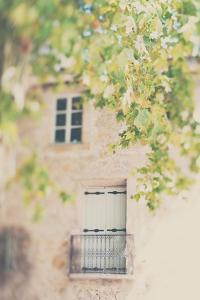 French Building with Balcony and Trees by Laura Evans