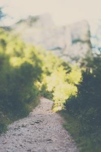 Mountain Scene with Path in Countryside by Laura Evans