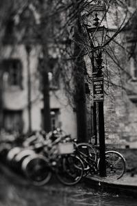 Rain by Laura Evans