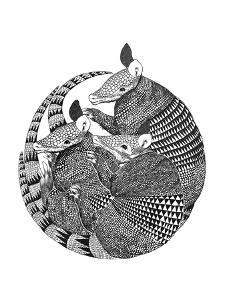 Armadillos by Laura Graves