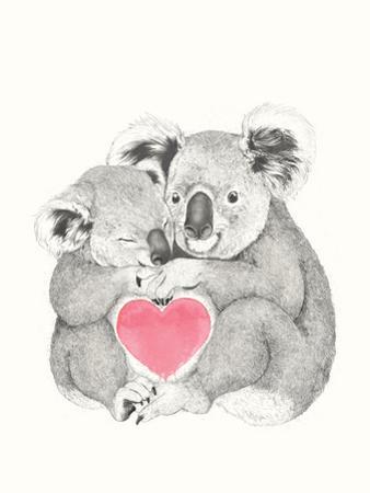 Koala Love Shugs