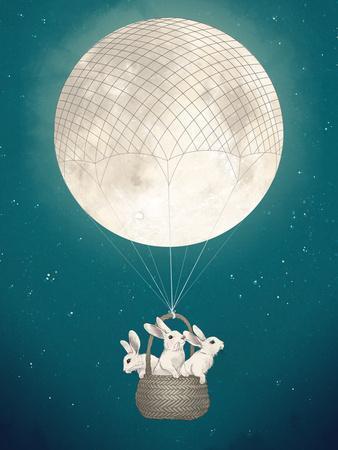 Moon Bunnies