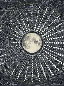 Phases Of The Moon 2017 by Laura Graves