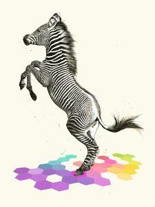 Zebra by Laura Graves