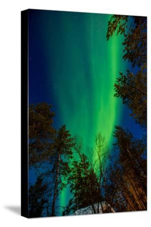 Aurora Borealis (The Northern Lights) over Kakslauttanen Igloo West Village, Saariselka, Finland
