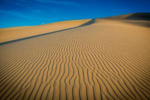 Sand Dunes at Huacachina Oasis, Peru, South America by Laura Grier