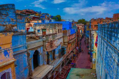 The Blue Rooftops in Jodhpur, the Blue City, Rajasthan, India, Asia by Laura Grier