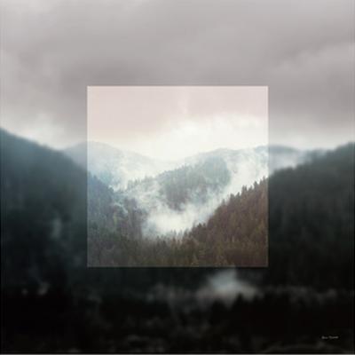 Framed Landscape I by Laura Marshall