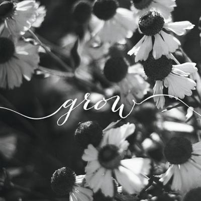 Grow by Laura Marshall