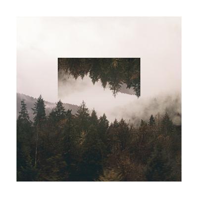 Reflected Landscape I
